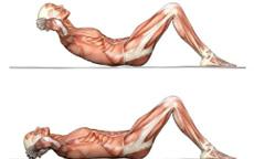 Lezioni Virtuali di Fitness – Lezione 7 – La scheda
