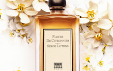 anteprima Fleurs de Citronnier di Serge Lutens