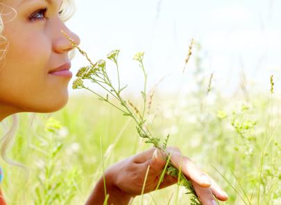 campo-fiori-Viaggi-Olfattivi