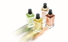 loccitane lancia la collection de grasse anteprima