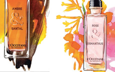 fragranze occitane
