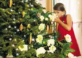 Tantissime idee regalo per il Natale di Bottega Verde, confezioni che diventano delle vere decorazioni