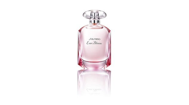 5 fragranze con una costruzione olfattiva rotonda